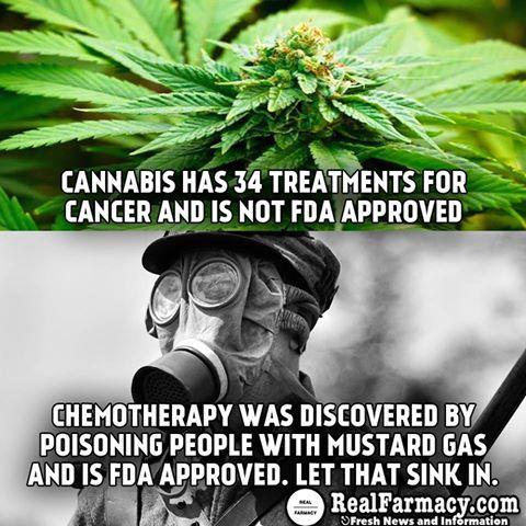 Cannabis vs. Chemo.jpg